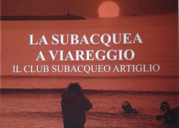 La subacquea a Viareggio - primo piano