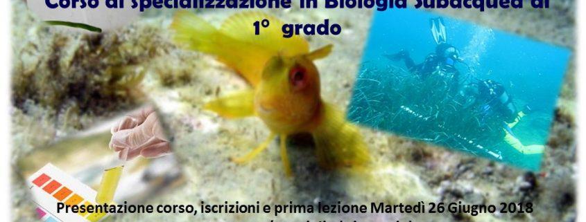corso di biologia marina club subacque artiglio in partenza da giugno 2018